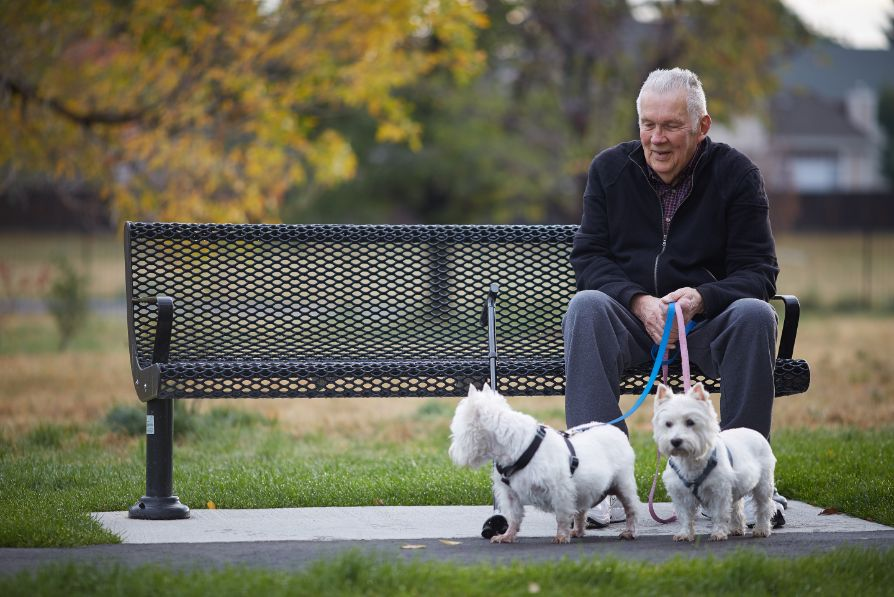 elderly man sitting on park bench with dogs